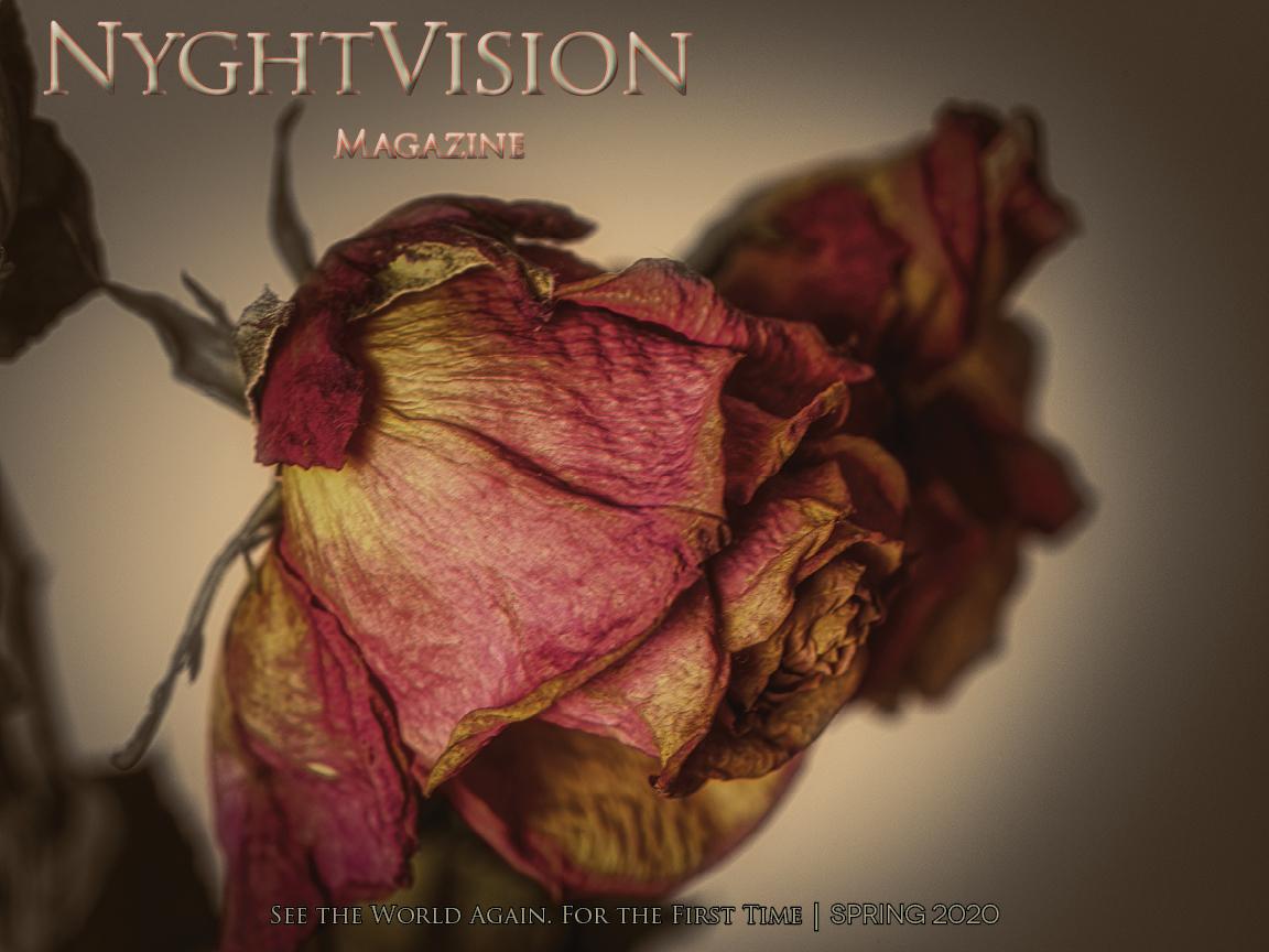 NyghtVision Magazine Volume 10 #2